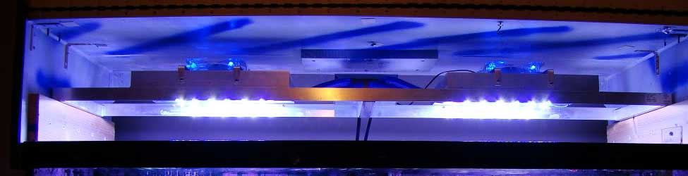 & DIY LED Reef Tank Light