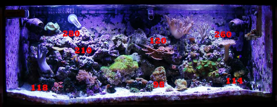 DIY LED Reef Tank Light Image 11